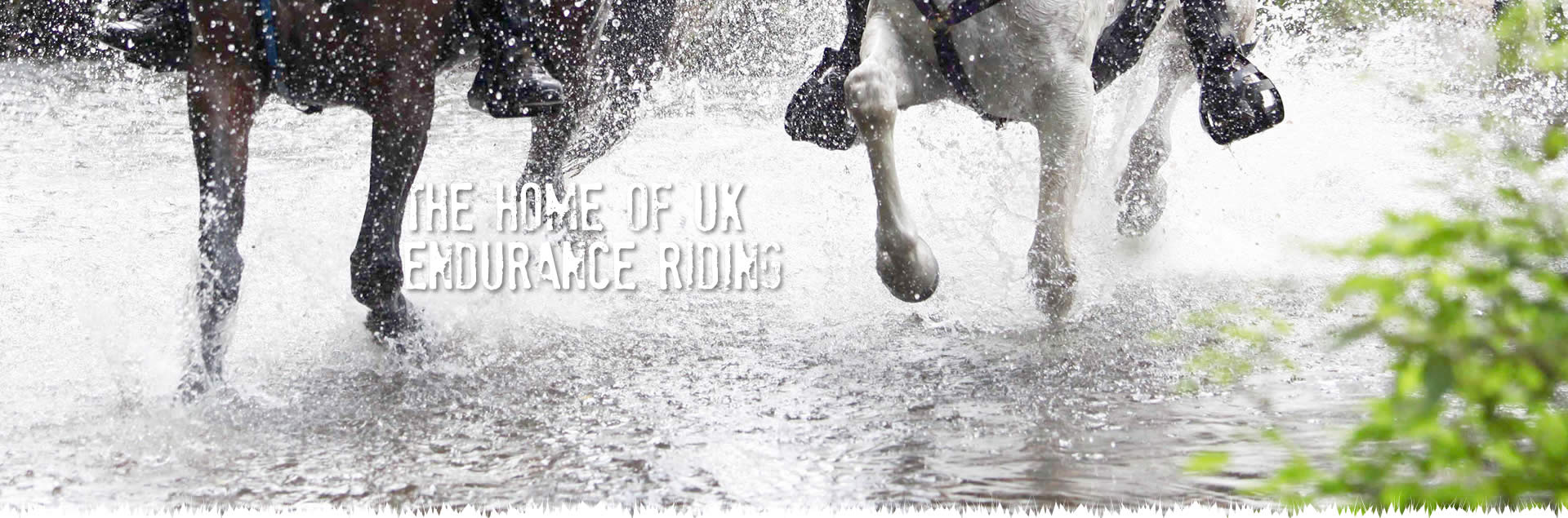 The Home of UK Endurance Riding